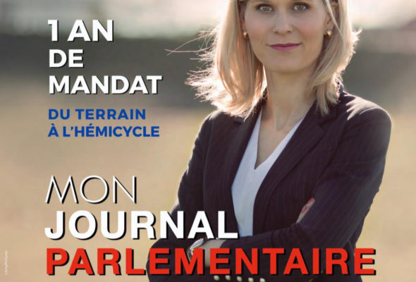 Mon journal parlementaire / 1 an de mandat