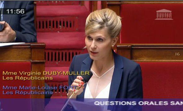 Question orale sans débat sur la compétence économique des départements