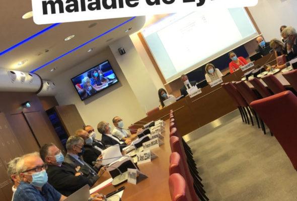 Je suis intervenue ce matin en commission des Affaires sociales dans le cadre d'un cycle d'auditions sur la maladie de Lyme.