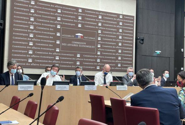 Audition, commune avec la commission des Affaires économiques, de MM. Gilles Pélisson, président directeur général du groupe TF1, et Nicolas de Tavernost, président du groupe M6