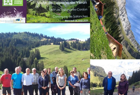 ⛰ Visite de l'alpage de Véran à Sallanches et des réalisations pastorales soutenues par le Département