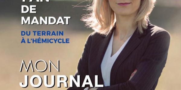 Journal 1 an
