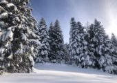 🏔🎿 Stations de ski : le gouvernement a confirmé aujourd'hui la prolongation de la fermeture des remontées mécaniques.