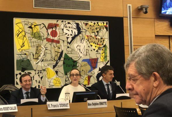 Commission des affaires culturelles : audition de D. Ernotte, présidente de France Télévisions