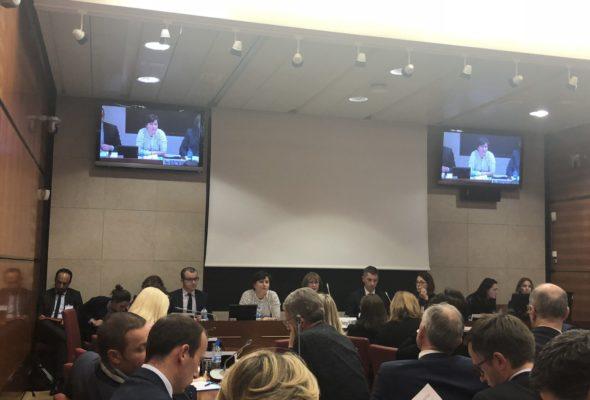 Audition de Roxana Maracineanu, ministre des sports, en commission