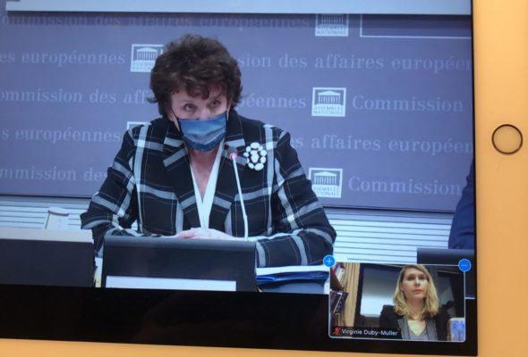 Audition de Roselyne Bachelot sur les conséquences de la crise sanitaire pour le secteur culturel et ses acteurs
